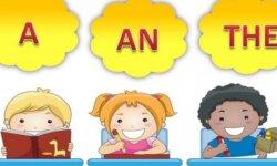 Mạo từ trong tiếng anh - cách sử dụng và bài tập áp dụng