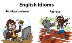 Idiom là gì? 113 thành ngữ idiom thường dùng nhất