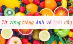 50+ Từ vựng tiếng anh chủ đề trái cây