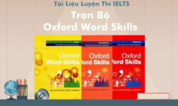 Tải trọn bộ Oxford Word Skills Basic + Intermediate + Advance