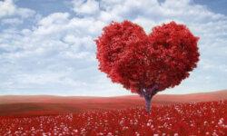 từ vựng tiếng anh về tình yêu