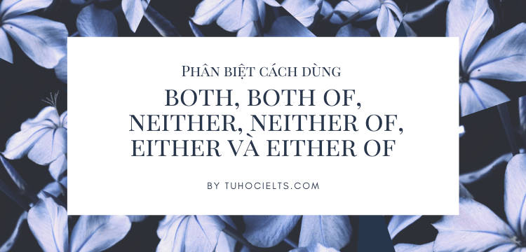 Phân biệt cách dùng both, both of, neither, neither of, either và either of