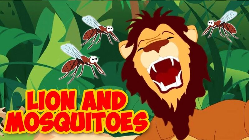 Lions and mosquitoes