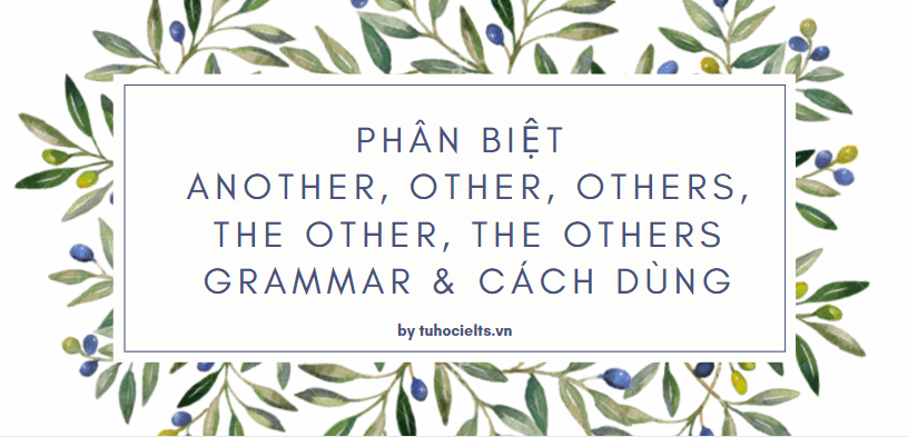 Phân biệt another, other, others, the other, the others grammar & Cách dùng