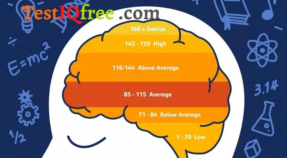 Có thể làm bài kiemr tra IQ miễn phí tại testiqfree.com