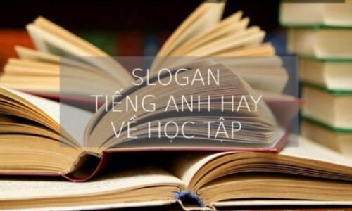 Top 25 Những câu slogan hay về học tập bằng tiếng anh