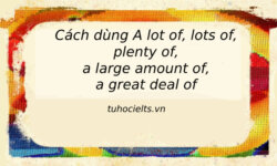 Cách dùng a lot of, lots of, plenty of, a large amount of, a great deal of