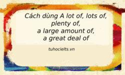 Phân biệt cấu trúc và cách dùng A lot of, Lots of, Plenty of, A large amount of, A great deal of