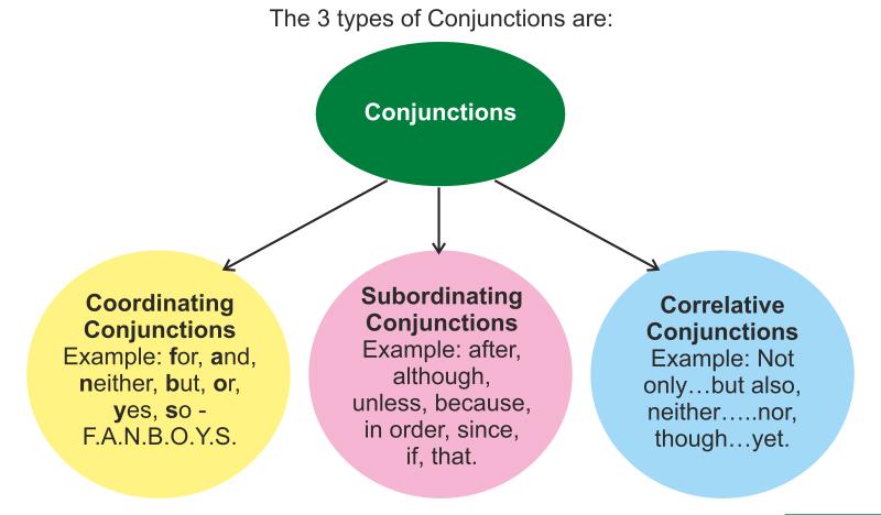 Các loại liên từ (conjunction) trong tiếng Anh.
