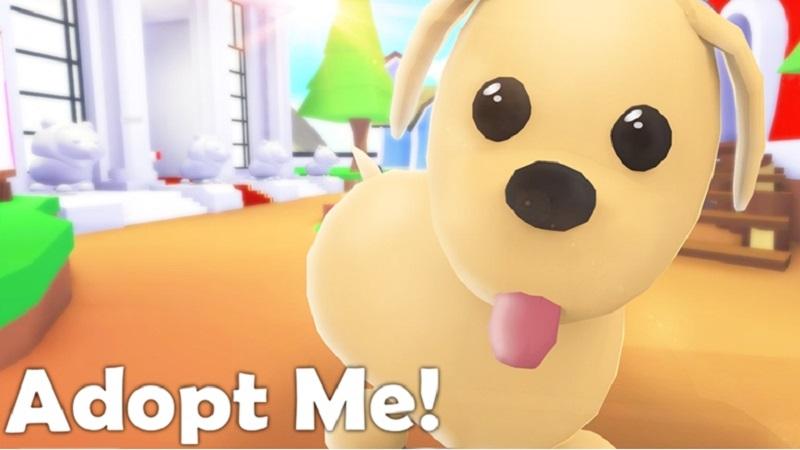 """""""Adopt me"""" có nghĩa là nhận nuôi tôi đi nè"""
