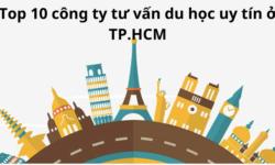 Top 10 công ty tư vấn du học uy tín ở TP.HCM
