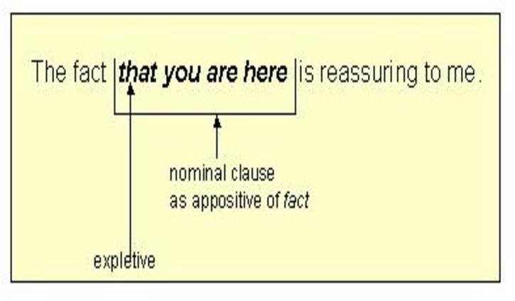 Ví dụ cấu trúc mệnh đề danh từ.