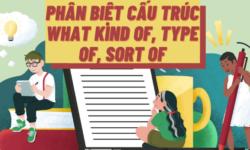 Phân biệt giữa cấu trúc What kind of và Type of, Sort of trong tiếng Anh
