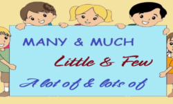 Sự khác biệt giữa Few và A Few, Little, A Little, Many, Much, Lots of và A Lot of