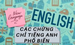 Các chứng chỉ tiếng Anh phổ biến tại Việt Nam