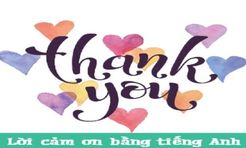 Tổng hợp những lời cảm ơn bằng tiếng Anh hay nhất
